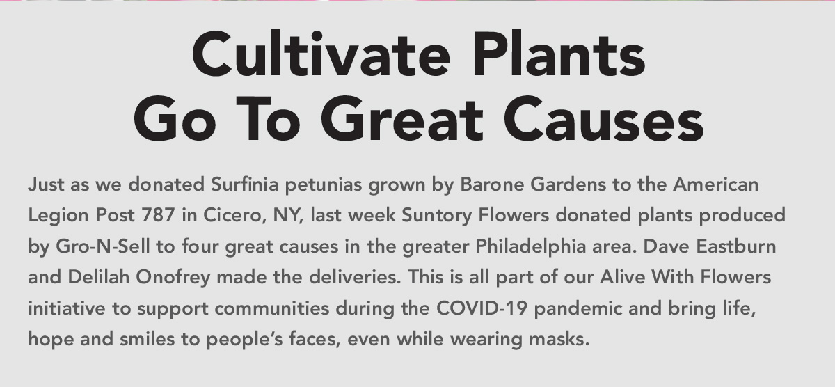 Cultivate Plants Go To Great Causes