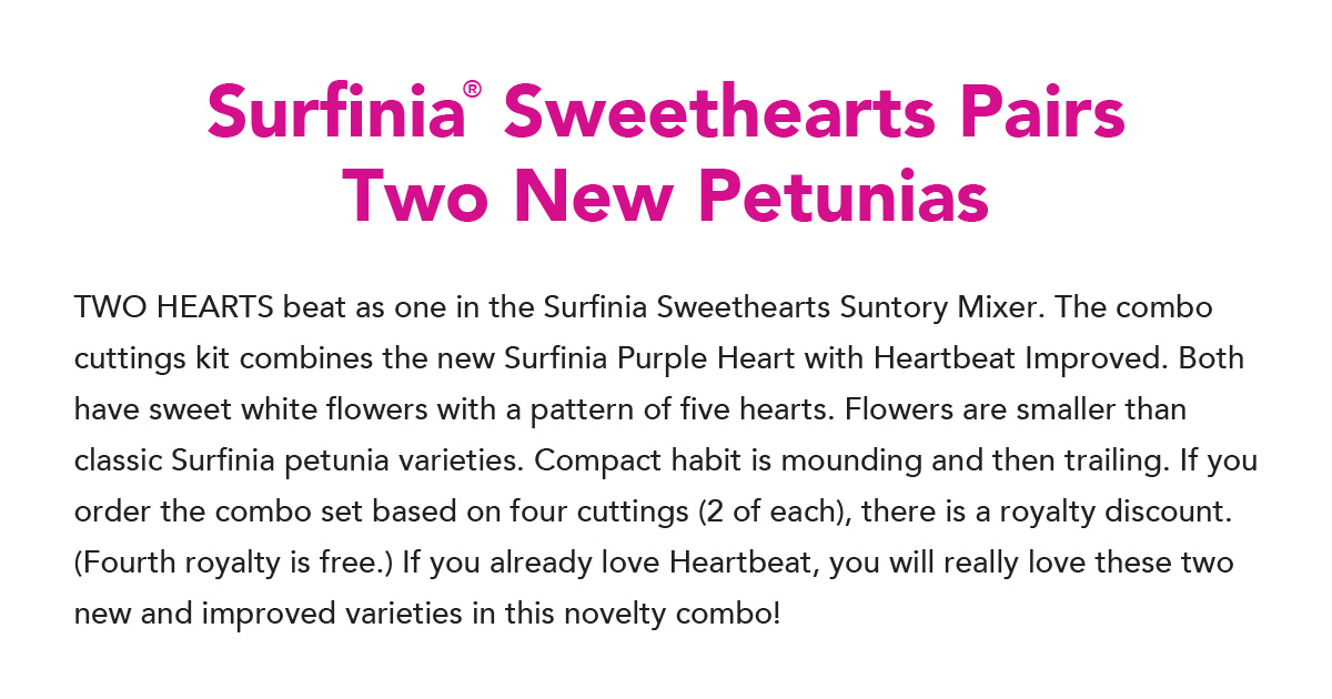 Surfinia Sweethearts Pairs Two New Petunias