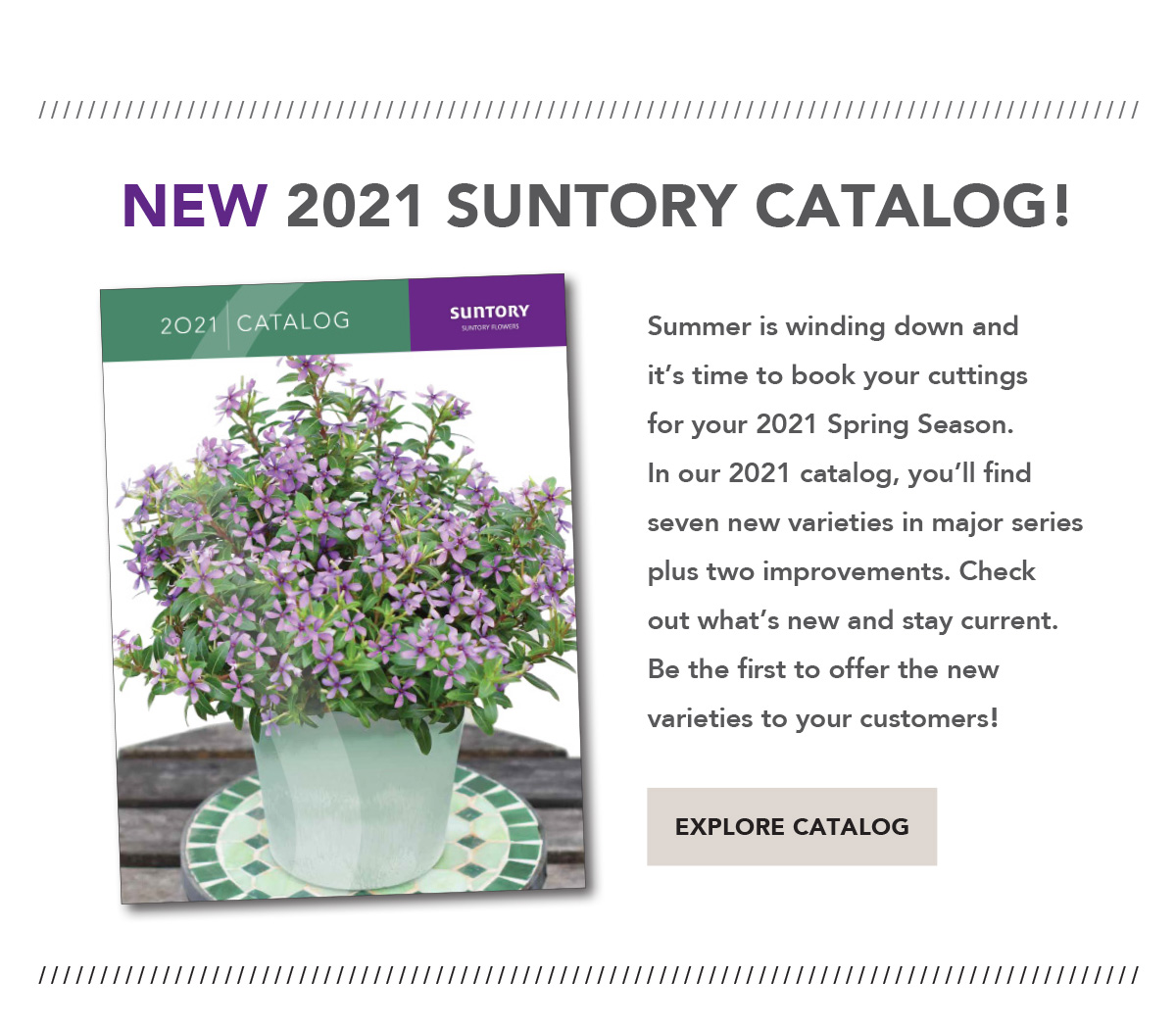 Suntory Flowers 2021 Catalog
