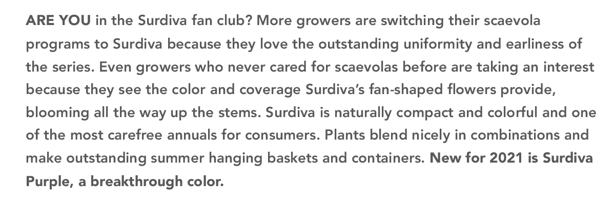 ARE YOU in the Surdiva fan club?