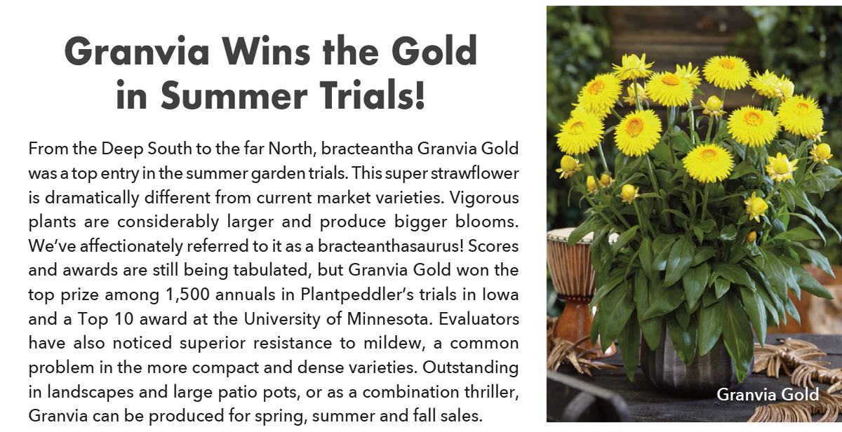 Granvia Wins the Gold in Summer Trials