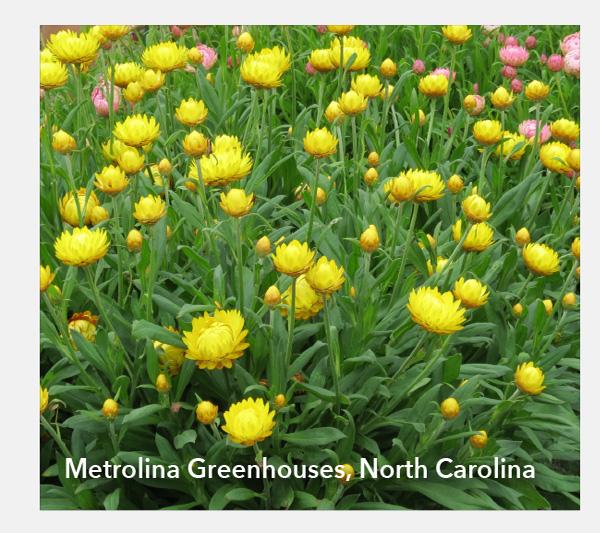 Metrolina Greenhouses, North Carolina
