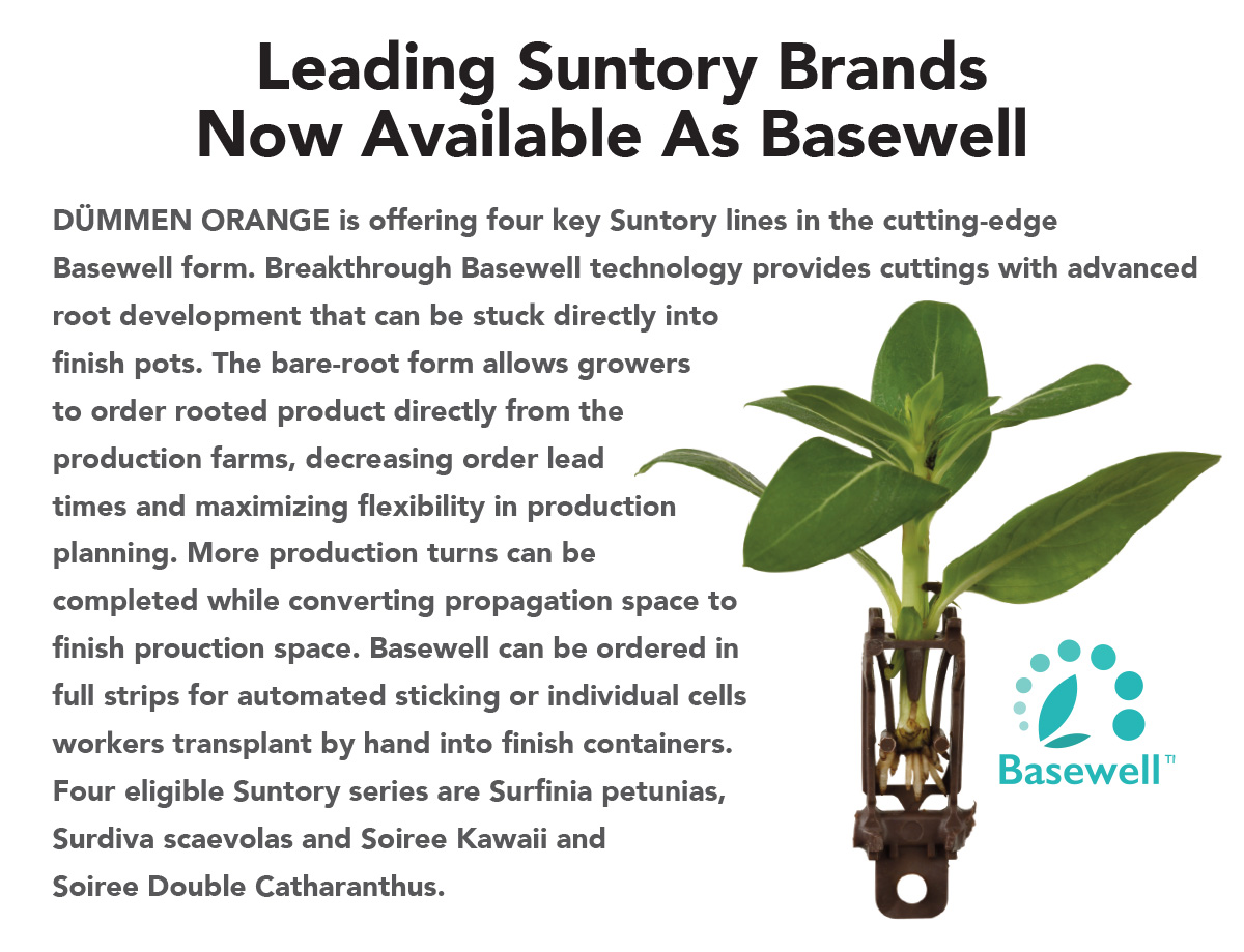 Leading Suntory Brands Now Available As Basewell