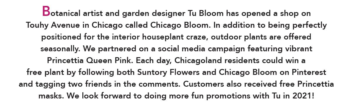 Chicago Bloom on Facebook