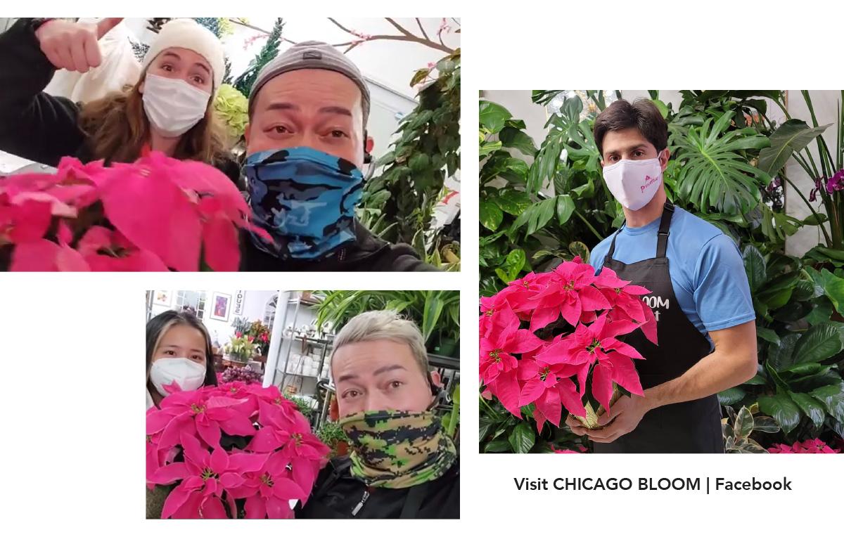 Chicago Bloom