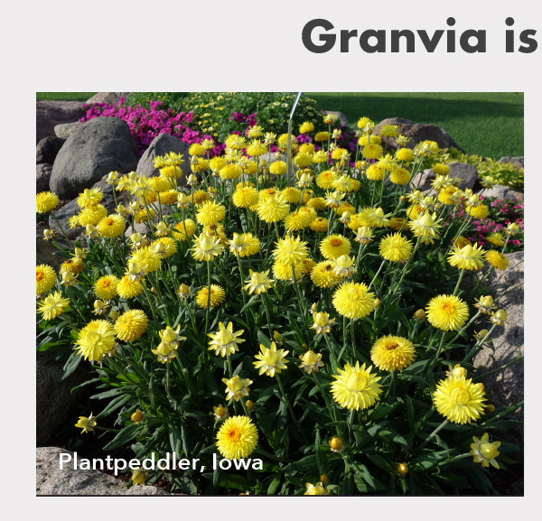 Plantpeddler, Iowa