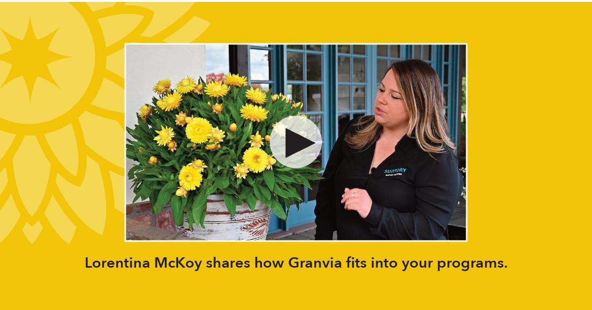 Watch Granvia Video