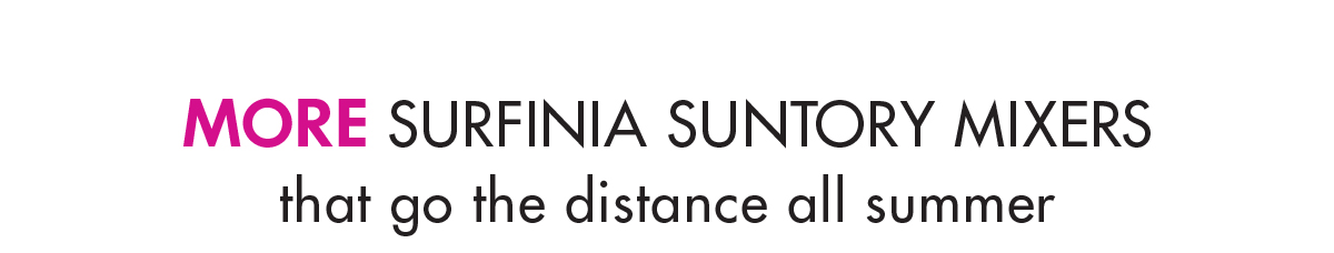 MORE SURFINIA SUNTORY MIXERS