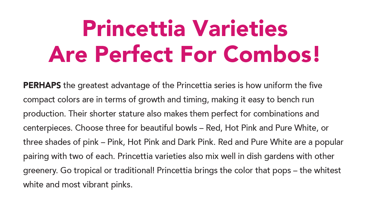 Princettia Varieties Are Perfect For Combos
