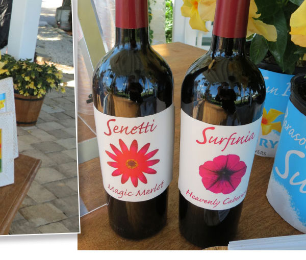 SURFINIA HEAVENLY CABERNET