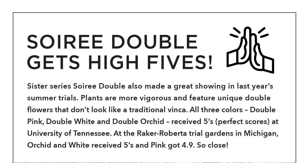 SOIREE DOUBLE Series