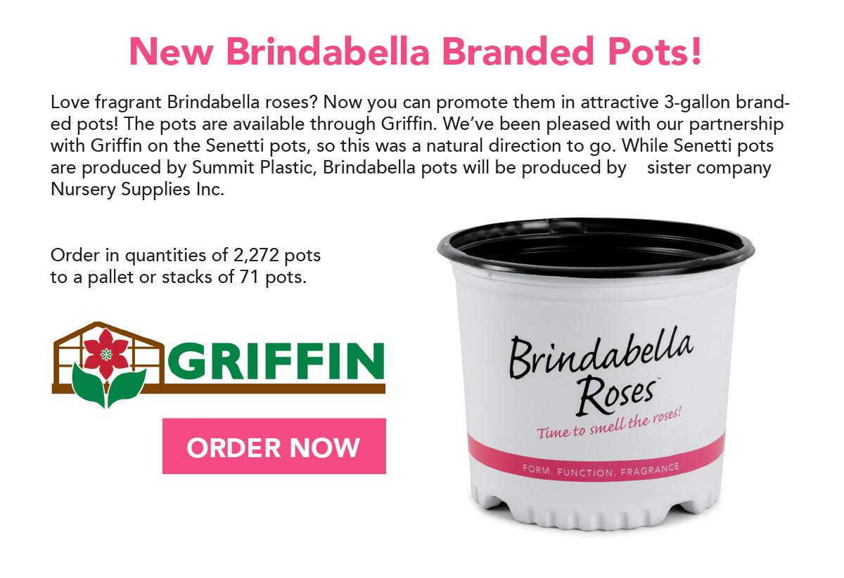 Brindabella branded pots