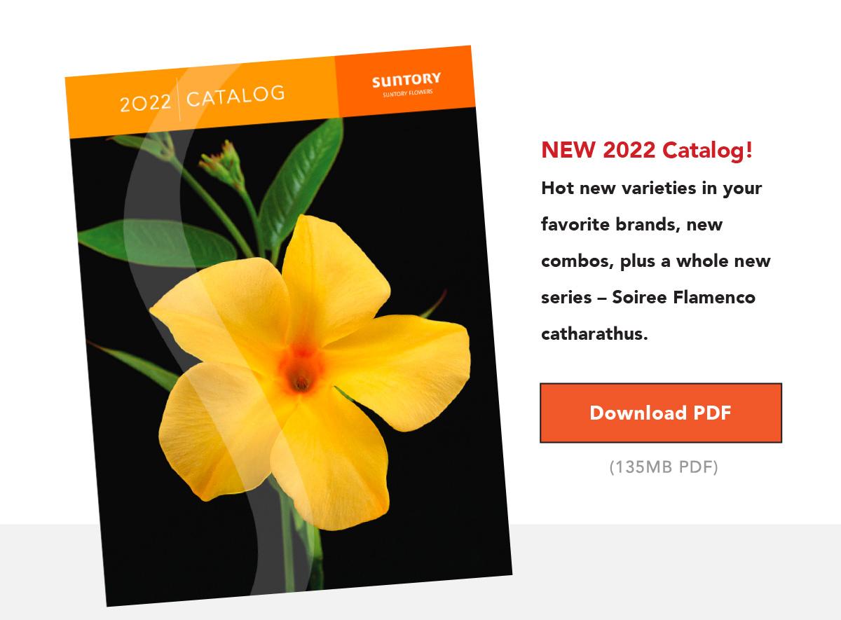 Download Catalog (135 MB PDF)